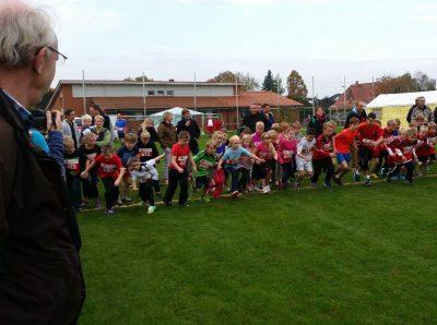 Vereinsarbeit in Action: Herbstlauf des TSV