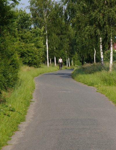 als Fahrradstraße ausgebaut: Der Sülzweg