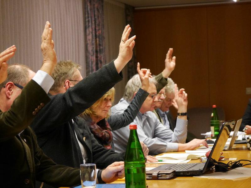 Abstimmung im Reppenstedter Gemeinderat